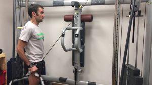 Triceps Braquial Cabeza Corta
