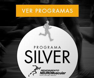 ads-silver.jpg
